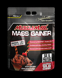 Muscle Maxx MASS GAINER от AllMax Nutrition