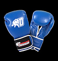 Boxing gloves - D-Logo - Blue - Leather pentru diete