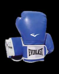Boxing Gloves Pro Style - Blue от Everlast