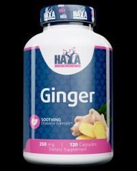 Ginger 250 mg от Haya Labs