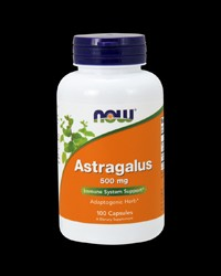 Astragalus 500 mg от NOW Foods